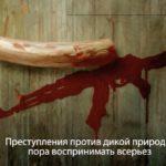 Russian Subtitling UN